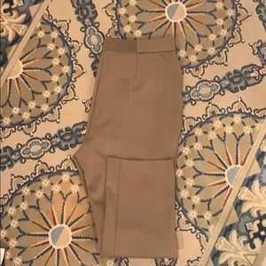 Shape FX ankle length legging  in beige